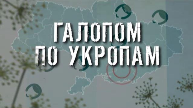 ГТРК ЛНР. Галопом по укропам. 13 октября 2020 г. 17:40