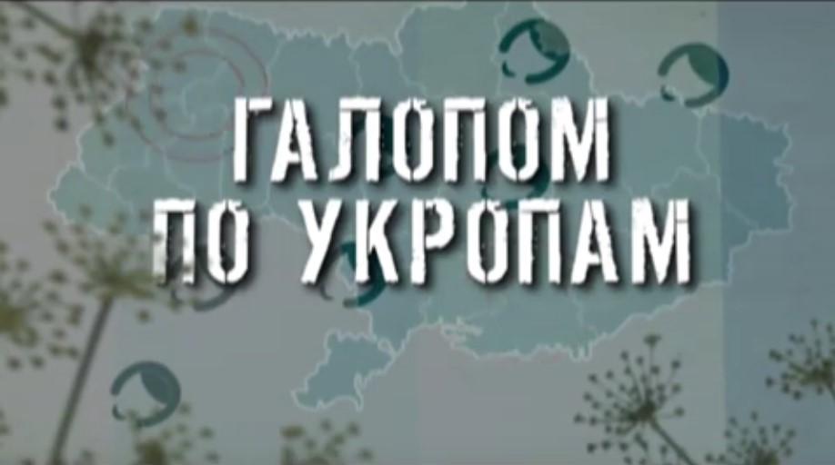 ГТРК ЛНР. Галопом по укропам. 7 ноября 2019 г.